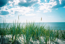 stock photo of summer beach  - Summer on the beach - JPG