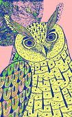 Owl And The Moon. Colorful Reaistic Drawing. Psychedelic Cartoon Style. Graphic Sketch. Vector Illus poster