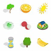 Natural Recovery Icons Set. Isometric Set Of 9 Natural Recovery Icons For Web Isolated On White Back poster