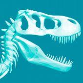 Polygonal Dinosaur Head. Skull Of A Prehistoric Dinosaur. 3d. Vector Illustration poster
