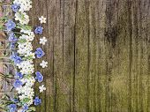 Beautiful, Spring Flowers Lying On Shabby Boards poster