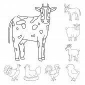 Vector Design Of Homemade And Countryside Icon. Set Of Homemade And Agriculture Vector Icon For Stoc poster