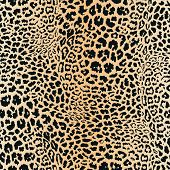Realistic Leopard Print. Animal Skin Seamless Pattern. Vector Background With Black Spots On Brown A poster