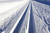 pic of nordic skiing  - cross - JPG