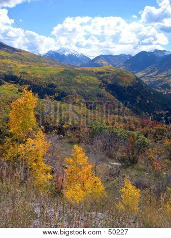 Picture or Photo of Vertical scene on mcclure pass in autumn
