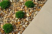 stock photo of paving  - Landscaping combinations of plants pebbles and paving - JPG