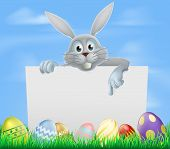 foto of ester  - White Easter bunny peeking over a sign and pointing with Easter eggs in a spring field - JPG