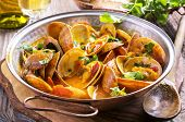 stock photo of saucepan  - clams in tomato sauce - JPG