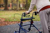 image of disability  - Disabled independent woman using a walker in the park - JPG