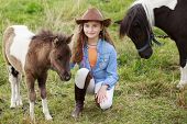 picture of foal  - Little foal  - JPG