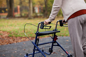image of independent woman  - Disabled independent woman using a walker in the park - JPG