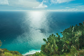 pic of peyote  - View to the Atlantic ocean from the rocky coast of Ponto do Pargo Madeira Portugal - JPG