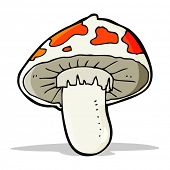 image of toadstools  - cartoon poisonous toadstool - JPG