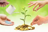 stock photo of helping others  - Hands helping each other growing a tree growing on golden coins with green background - JPG