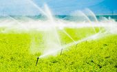 image of farm land  - Farm Field Irrigation - JPG