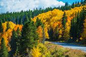 picture of rocky-mountains  - Scenic Fall Colorado Road - JPG