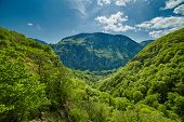 foto of afforestation  - Beautiful landscape with afforested mountain on springtime - JPG