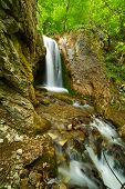 pic of vegetation  - Beautiful landscape with a waterfall and vegetation - JPG