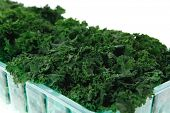 picture of kale  - fresh raw green kale packed in plastic box ready to sell isolated over white background - JPG
