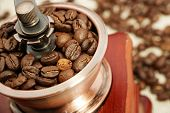 foto of coffee coffee plant  - Closeup picture of coffee bean grinder and coffee bean - JPG