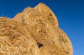 image of hay bale  - Piled hay bales on a field against blue sky at sunset time - JPG