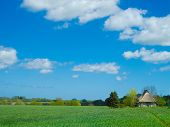 foto of farmhouse  - old farmhouse with thatched roof in rural landscape - JPG