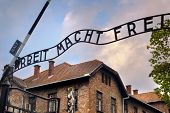 stock photo of auschwitz  - Entrance to the Auschwitz concentration camp - JPG