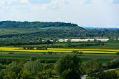 foto of rape-field  - View of the Vistula river valley with flowering oilseed rape fields in the area of Janowiec