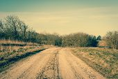 foto of dirt road  - Dirt track road with trees in autumn - JPG