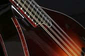 picture of hillbilly  - Mandolin isolated on black background with path - JPG