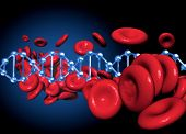 pic of leukocyte  - DNA and red blood cells together in an conceptual image - JPG