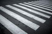 Nobody On Crosswalk In Black And White Crosswalk poster