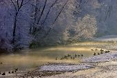 foto of boise  - Winter morning on the Boise River in downtown Boise - JPG