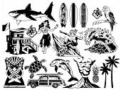 Summer Paradise Surfing Vintage Retro Set Icons Monochrome Collection With Sea Ocean Animals Wave Pa poster