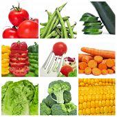 a collage of nine pictures of different vegetables