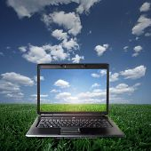 Laptop On Green Grass On A Sunny Day poster