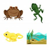 Bitmap Design Of Frog And Anuran Icon. Set Of Frog And Animal Bitmap Icon For Stock. poster