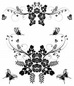 picture of white flower  - Collect flower border with butterfly element for design vector illustration - JPG