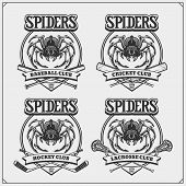 Cricket, Baseball, Lacrosse And Hockey Logos And Labels. Sport Club Emblems With Spider. Print Desig poster