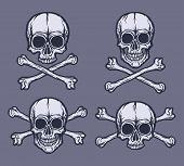 Human Skulls Vector Set. Hand Drawn Black And White Vector Skulls poster