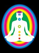 foto of plexus  - colorful aura with all chakras of body vector illustration - JPG