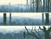 picture of blue spruce  - Horizontal abstract banners of winter snowfall in hills forest in blue tone - JPG