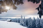 Fantastic winter landscape. Dramatic overcast sky. National Park. Carpathian, Ukraine, Europe. Beaut
