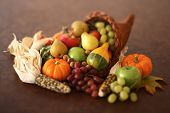 Cornucopia still life on brown background