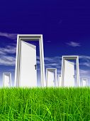 High resolution green, fresh and natural 3d conceptual grass over a blue sky background, a opened do