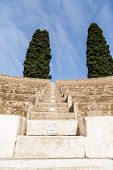 Two Spruce Trees On Pompeii Amphitheater
