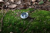Compass On A Mossy Log In A Forest