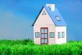 Little house on green grass, on bright background
