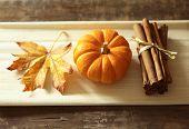 picture of fallen  - Fall still life pumpkin spice - JPG
