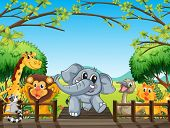 picture of landforms  - Illustration of a group of wild animals at the bridge in the forest - JPG